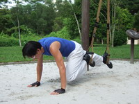 TRX alternate knee thrust