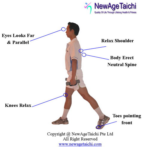 Exercises to Correct Spinal Alignment http://newagetaichi.com/?main=most_effective_butt_exercise