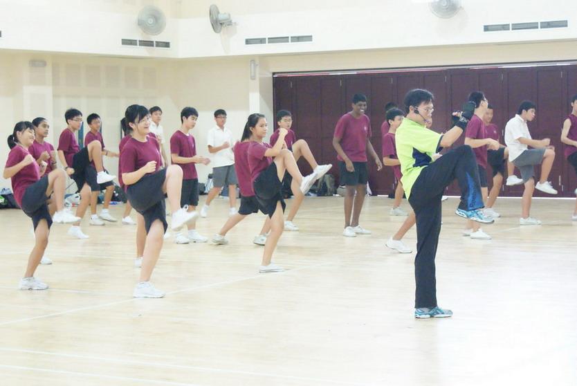 Wushu Kick Fit