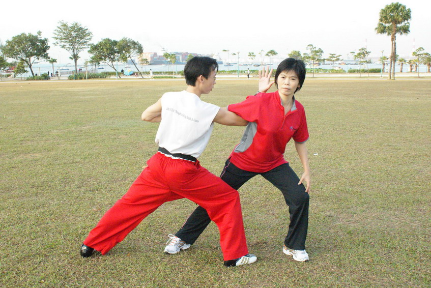 Wushu Self  Defense